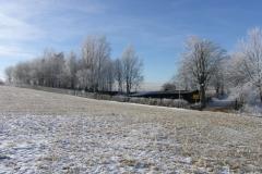 Winter Impressionen III